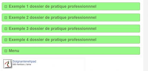 exemple dossier pratique professionnel
