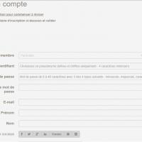 Attendre d'être redirigé vers le site, compléter le formulaire avec un identifiant et mot de passe