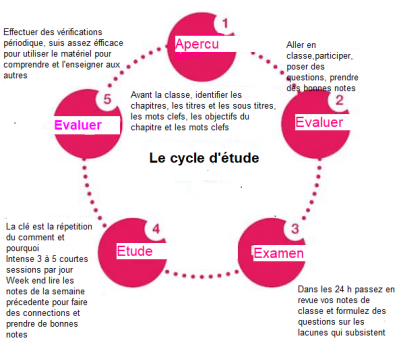 Cycle d etude