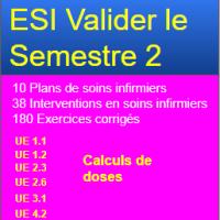 ESI Valider le semestre 2
