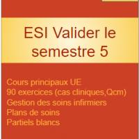 ESI Valider le semestre 5