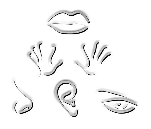 Fabulous objectif des ateliers stimulations cognitifs en ehpad UT02