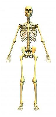trouvez la pathologie de la définition suivante :courbure en arrière très accentuée du rachis dorsal,